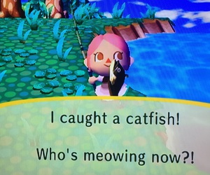 animal crossing, beauty, and catfish image