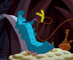 alice in wonderland, caterpillar, and hookah image