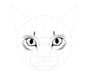 how to draw a cat image