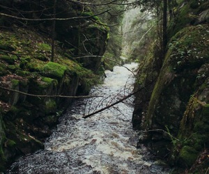 nature, river, and indie image