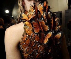 butterfly, Alexander McQueen, and dress image