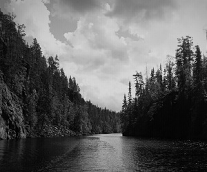 black and white, nature, and water image