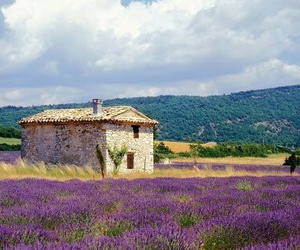 france and provence image