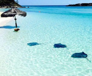 beach, relaxation, and clear water image
