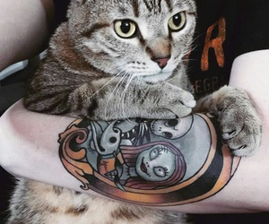 body modifications, body mods, and cat image