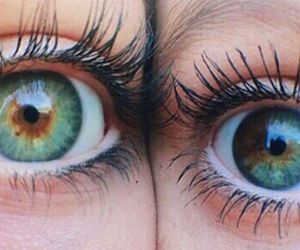 eyes, tumblr, and brown image