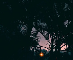sunset, nature, and tumblr image
