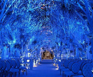 wedding, blue, and winter image