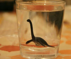 water, dinosaur, and black and white image