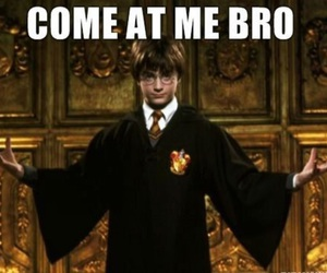 harry potter, funny, and bro image