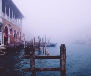 travel, venice, and water image