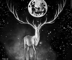 art, creative, and deer image