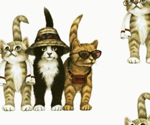 cats, kitty, and patterns image