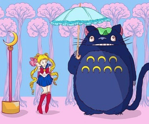 sailor moon and totoro image