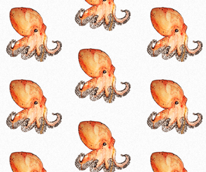 background, illustration, and octopus image
