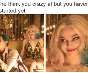 funny, suicide squad, and harley quinn image