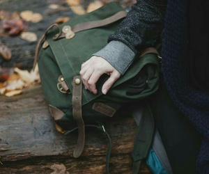 bag, autumn, and leaves image