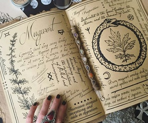 witch, book, and history image