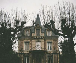 house, tree, and vintage image