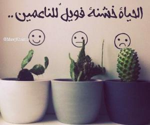 arabica and تصاميم،حب، image