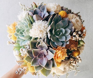 beautiful, florals, and flowers image