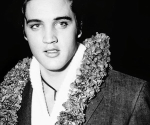 1950s, Elvis Presley, and old hollywood image
