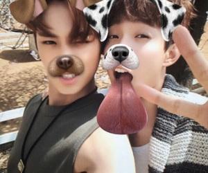 DK, kpop, and seventeen mingyu image