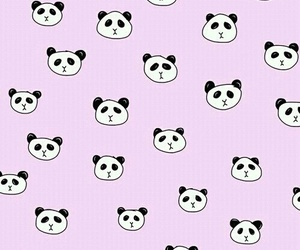 panda, wallpaper, and cute image