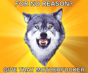 haters and courage wolf image