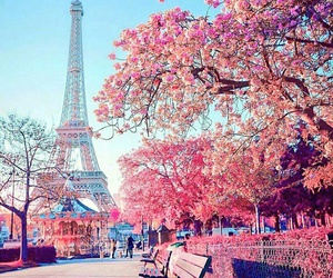 paris, pink, and travel image
