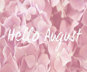 August, flowers, and pink image