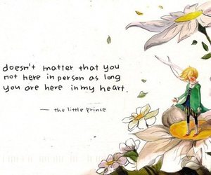 quotes, the little prince, and little prince image
