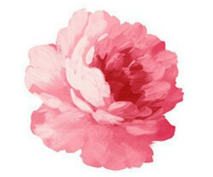 flower, pink, and art image