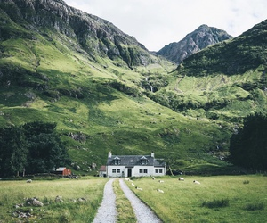 green, house, and road image