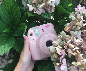 flowers, fujifilm, and instax image