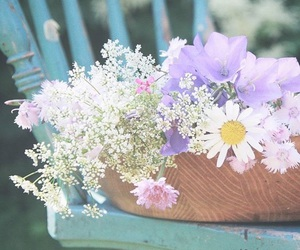 flowers, shabby chic, and spring image