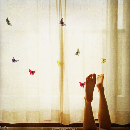 23, legs, and butterflies image