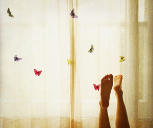 23, butterflies, and curtain image