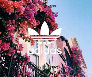 adidas, colorful, and flowers image