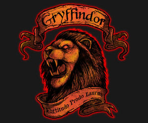 gryffindor, harry potter, and Houses image