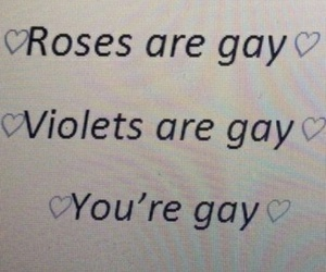 gay, rose, and violet image