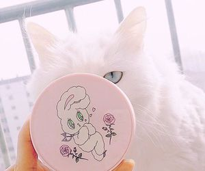 cute, cat, and pastel image