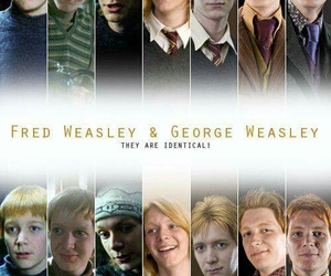 weasley, harry potter, and Fred image