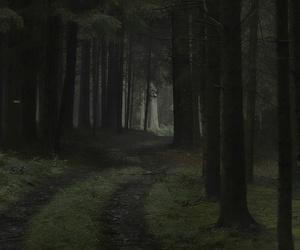 beautiful, dark, and pale image