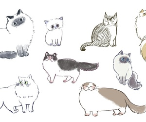 cat, how to draw, and cute image
