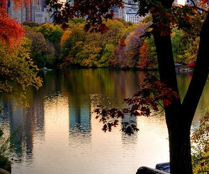 Central Park, autumn, and new york image