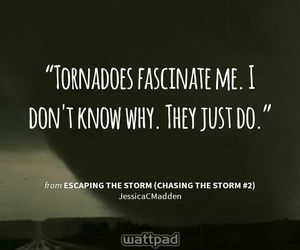 quote, storm, and tornadoes image