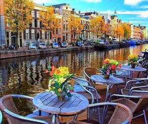 amsterdam, flowers, and water image