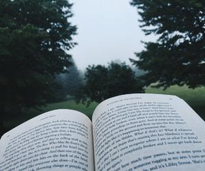 beautiful, bibliophile, and book image