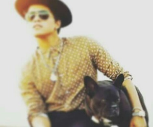 bruno mars and dog image